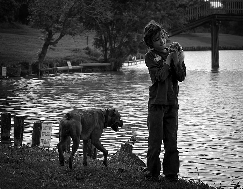 "photo ""Ashore"" tags: genre, nature, pets/farm animals"