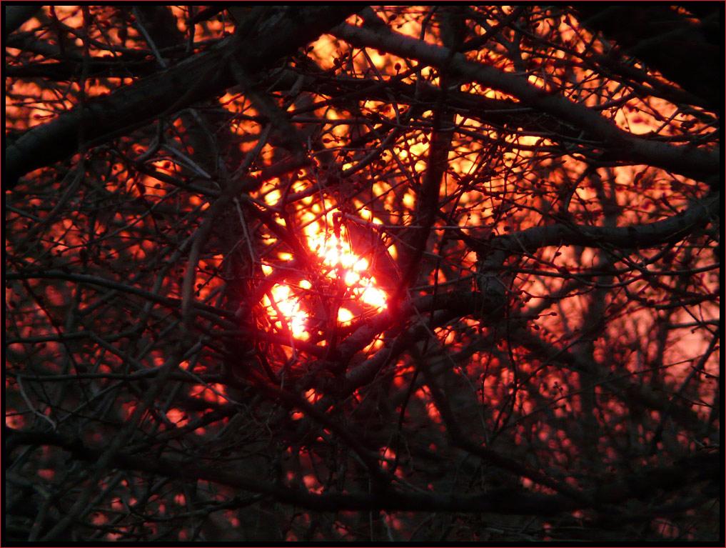 "photo ""the heart"" tags: landscape, genre, sunset"