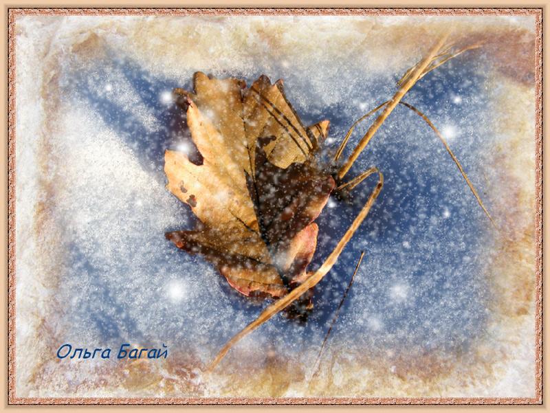 "photo ""Farewell Beauty"" tags: digital art,"