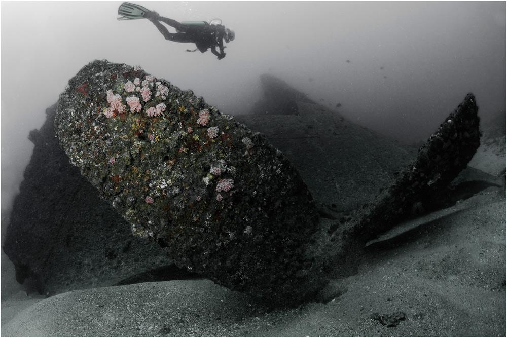"photo ""***"" tags: underwater, black&white,"