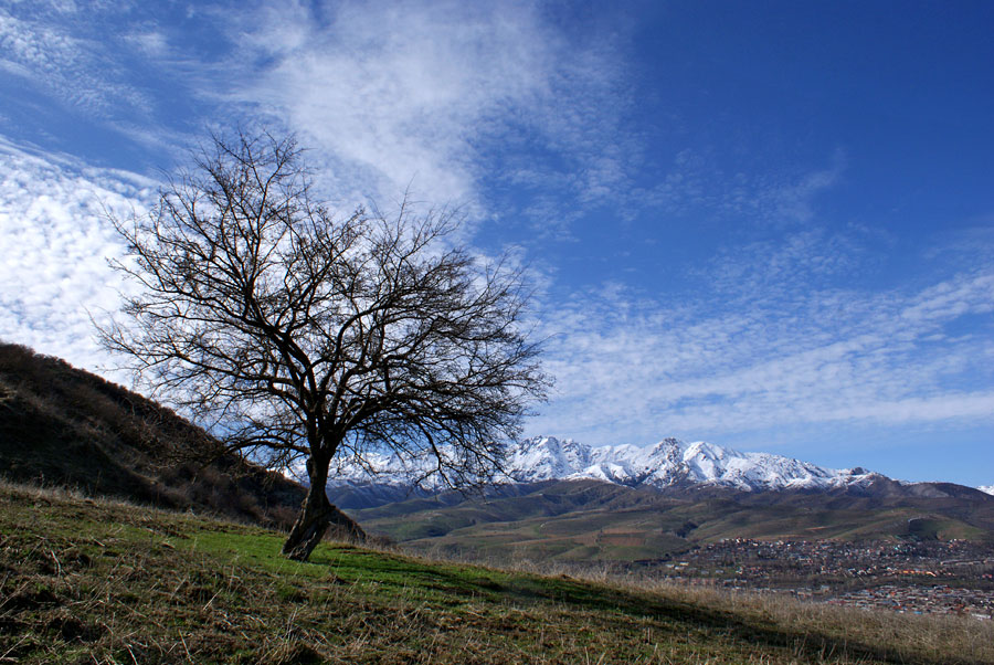 "photo ""***"" tags: landscape, mountains, spring"