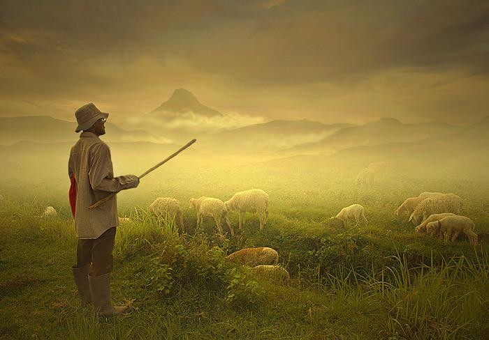 "photo ""shepherd"" tags: landscape, mountains"