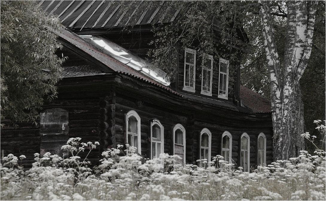 Дом у берёзы фото