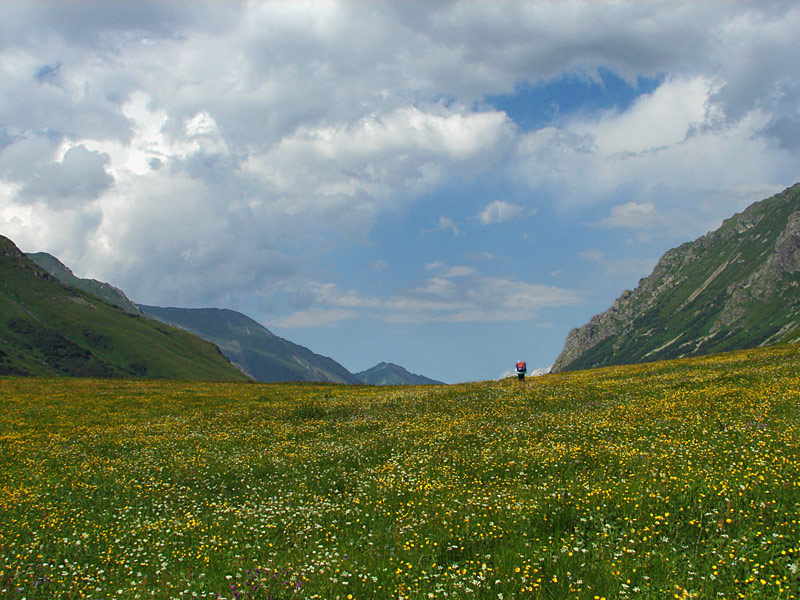 "photo ""***"" tags: landscape, mountains, summer"