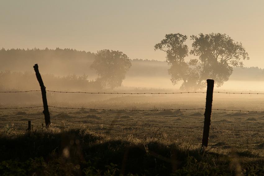 "photo ""fog"" tags: landscape, sunset"