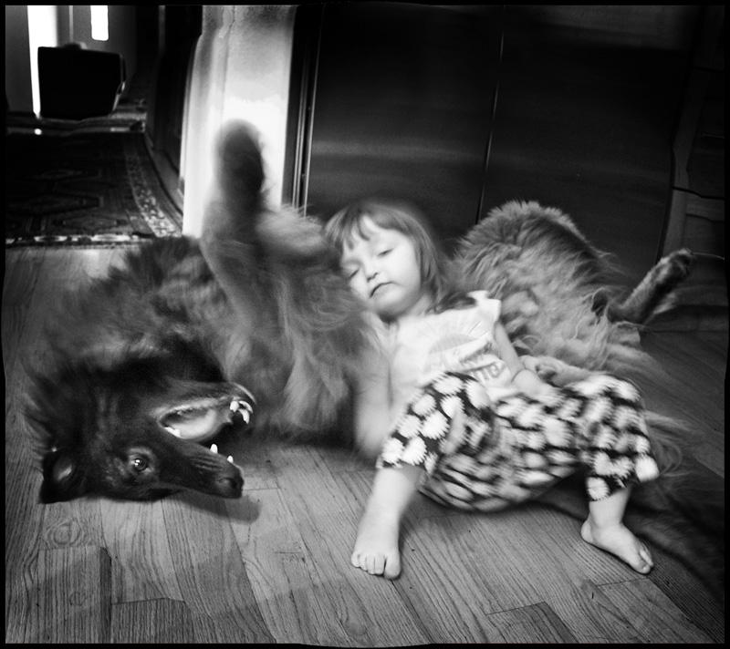 """фото """"Сказка о Сером Волке и Красной Шапочке 2"""" метки: ,"""