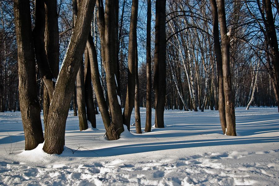 """фото """"-15"""" метки: пейзаж, зима"""