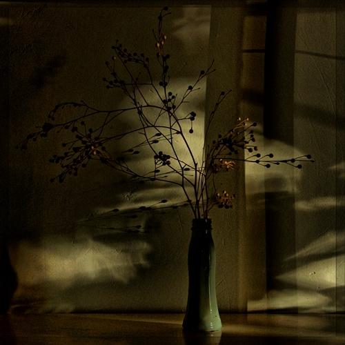 "photo ""Ночной натюрморт"" tags: still life,"