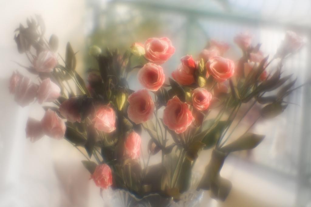 """фото """"Liziantus"""" метки: природа, цветы"""