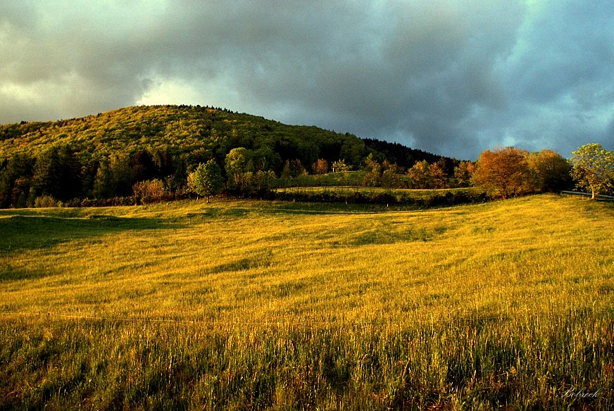 "фото ""evening"" метки: пейзаж,"