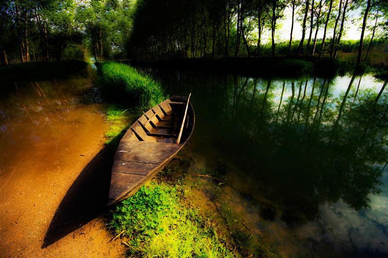 """фото """"nb"""" метки: пейзаж, лес"""