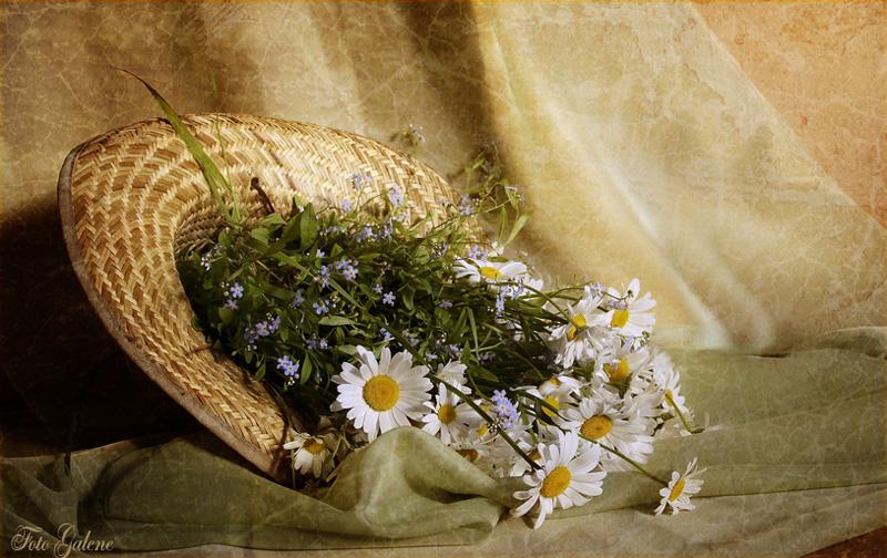 """фото """"Цветы в соломенной шляпе"""" метки: ,"""
