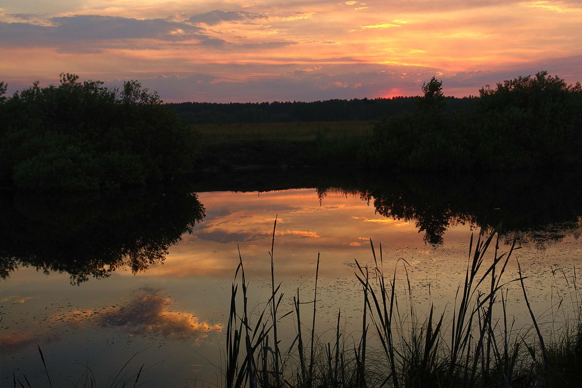 "фото ""Закат на озере."" метки: пейзаж, закат"