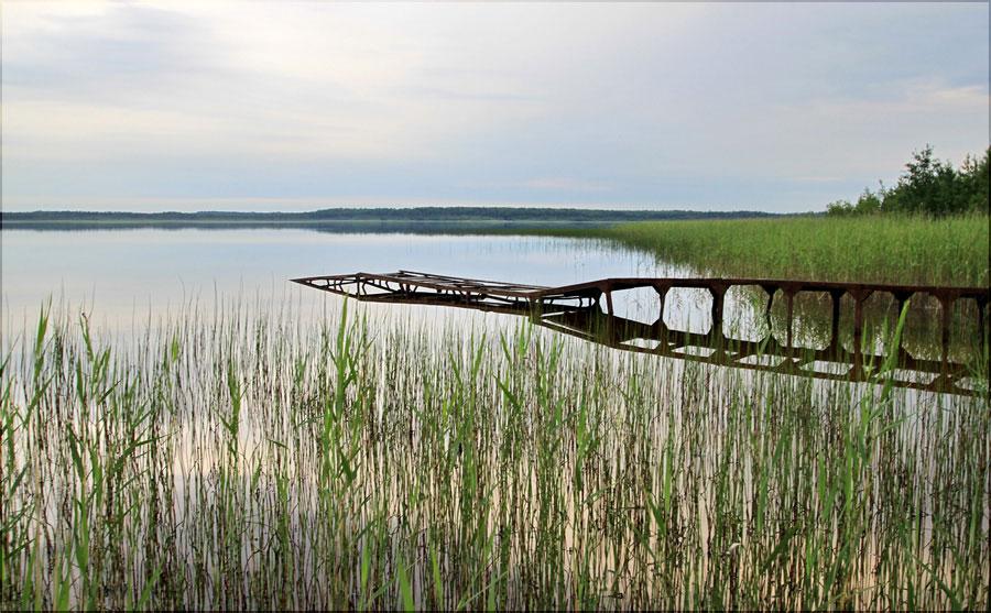 """фото """"На озере"""" метки: ,"""