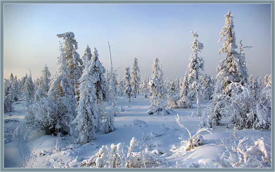 "фото ""Воспоминание о зиме"" метки: ,"