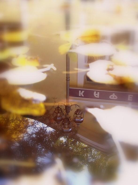 """photo """"осень,отражение,листва,мысли,воспоминания"""" tags: fragment, misc.,"""