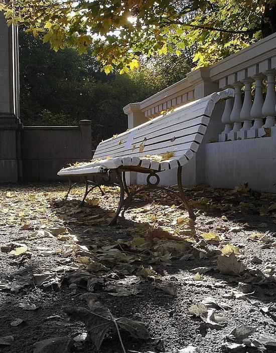 "photo ""осень,парк,природа,скамья,листва"" tags: landscape, misc., autumn"