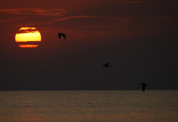 """фото """"Sunrise"""" метки: пейзаж, закат"""