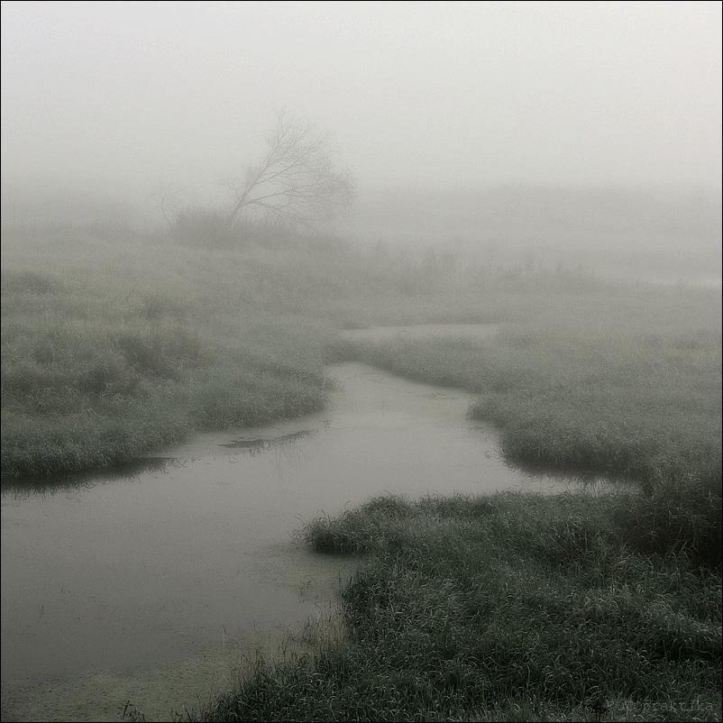 """фото """"Про туман..."""" метки: пейзаж,"""