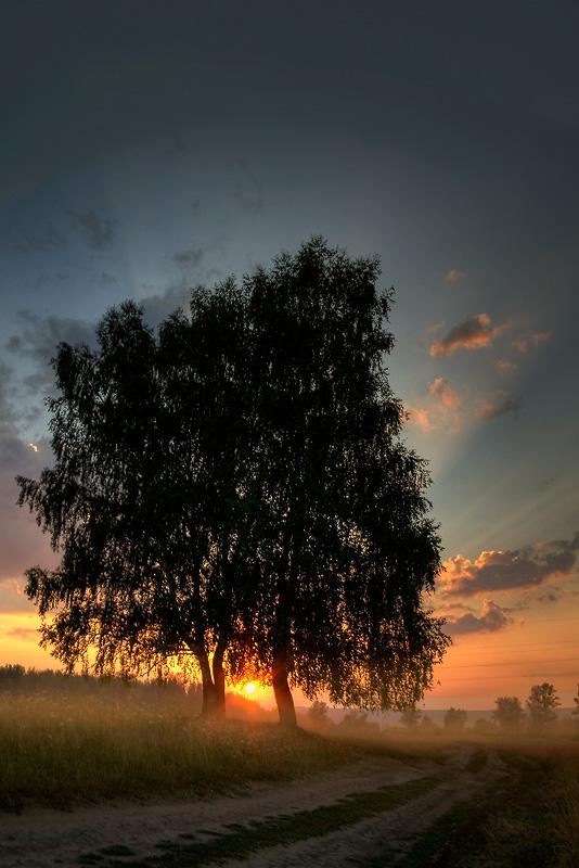 """фото """"Моя дорога"""" метки: пейзаж, лето"""