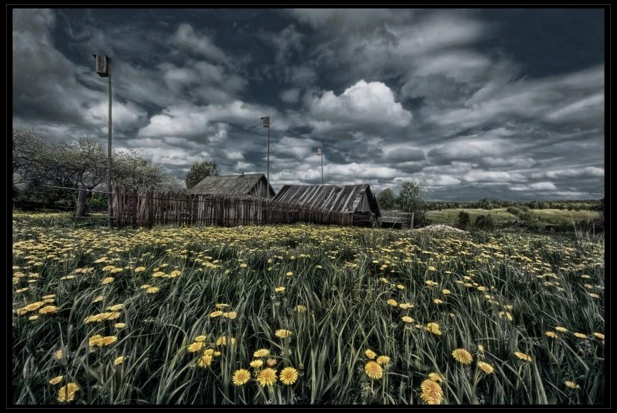 """фото """"Майский день"""" метки: пейзаж,"""
