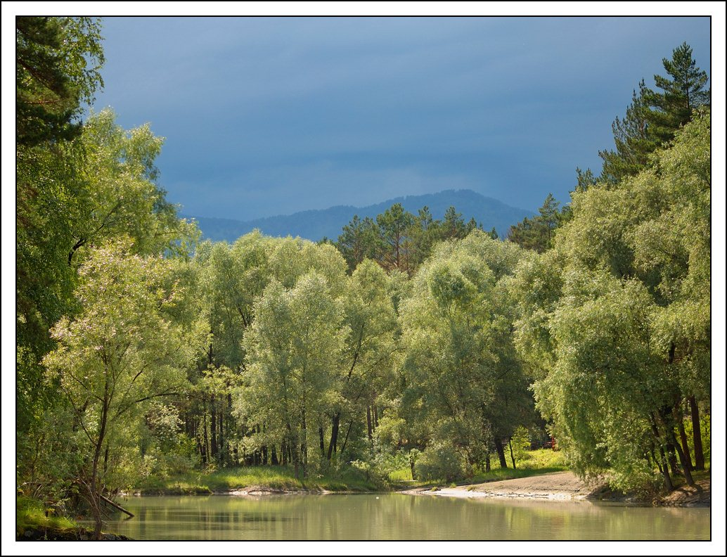 "photo ""Before the storm"" tags: landscape, forest, summer"