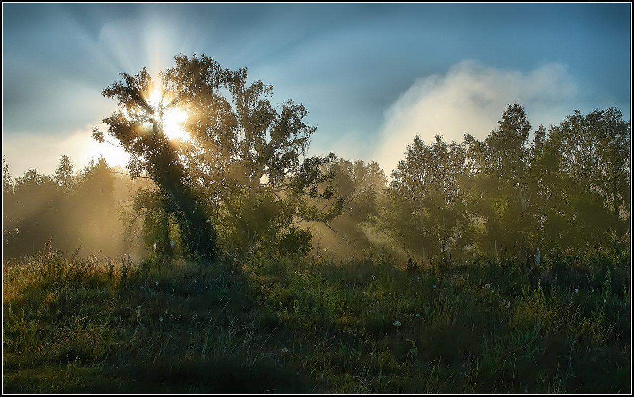 """фото """"Разрезая туман"""" метки: ,"""