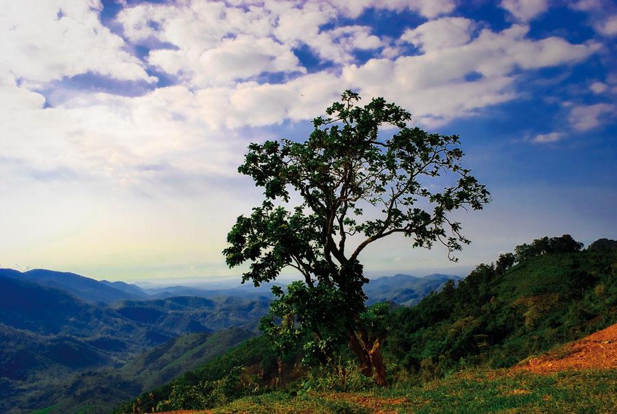"фото ""Раннее утро во Вьетнаме"" метки: пейзаж, горы, лето"