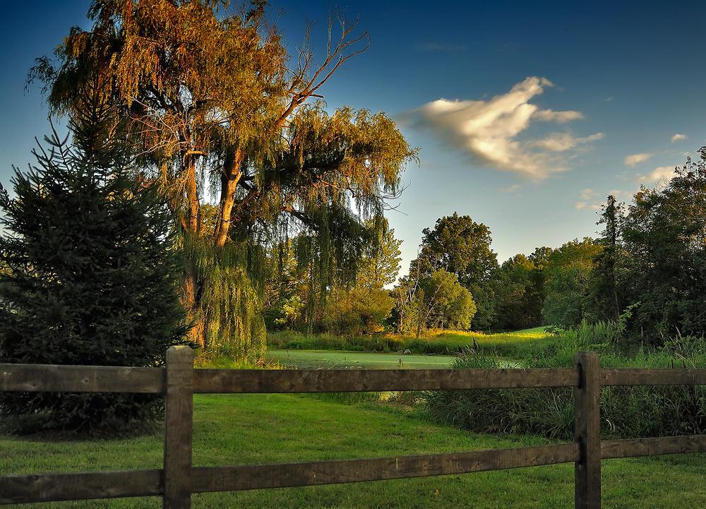 """фото """"Перед закатом....."""" метки: пейзаж, лето"""