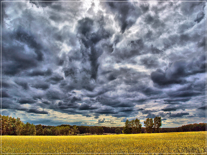 """photo """"Autumn in late July"""" tags: landscape, clouds, summer"""