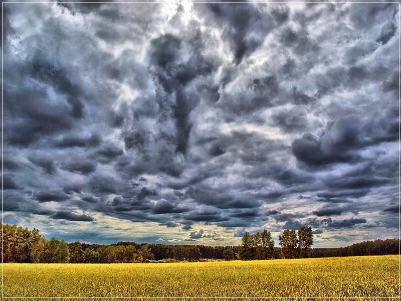 """фото """"осень в конце июля"""" метки: пейзаж, лето, облака"""