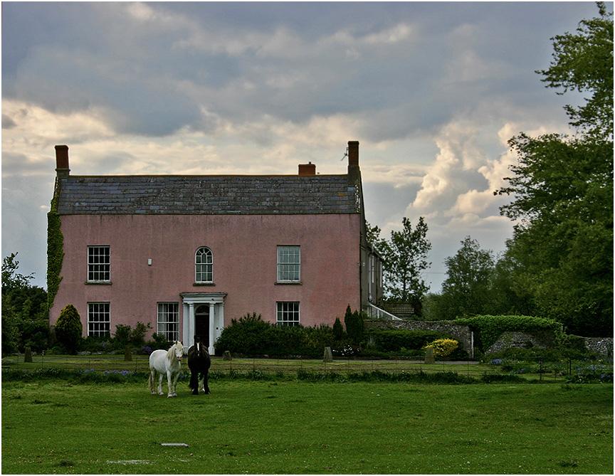 """фото """"Пара лошадей на фоне розового дома."""" метки: природа, пейзаж, домашние животные, лошади"""