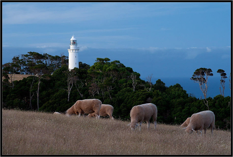 """фото """"Blue II"""" метки: пейзаж, путешествия, Австралия"""