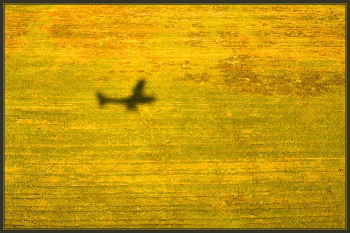 "photo ""Flight"" tags: misc.,"