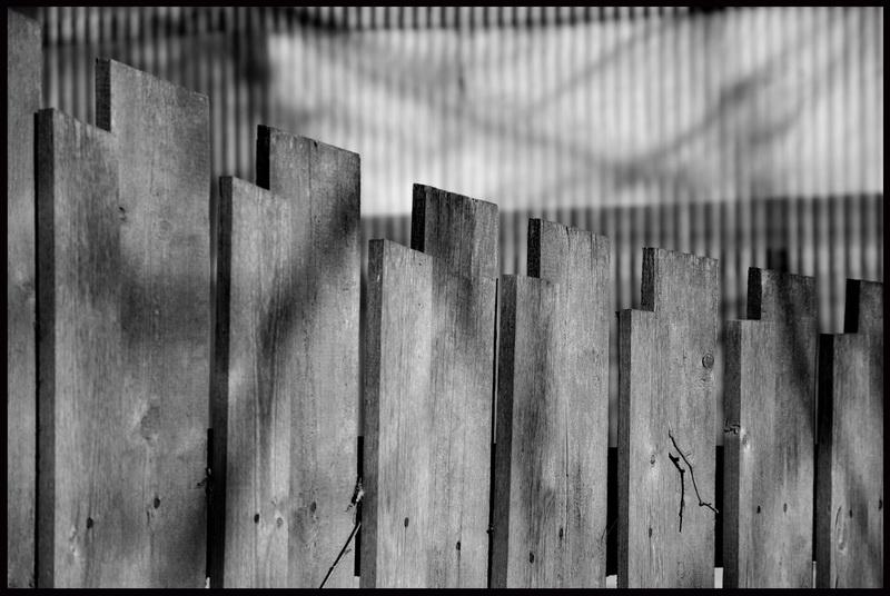 """фото """"Линии"""" метки: фрагмент, черно-белые,"""