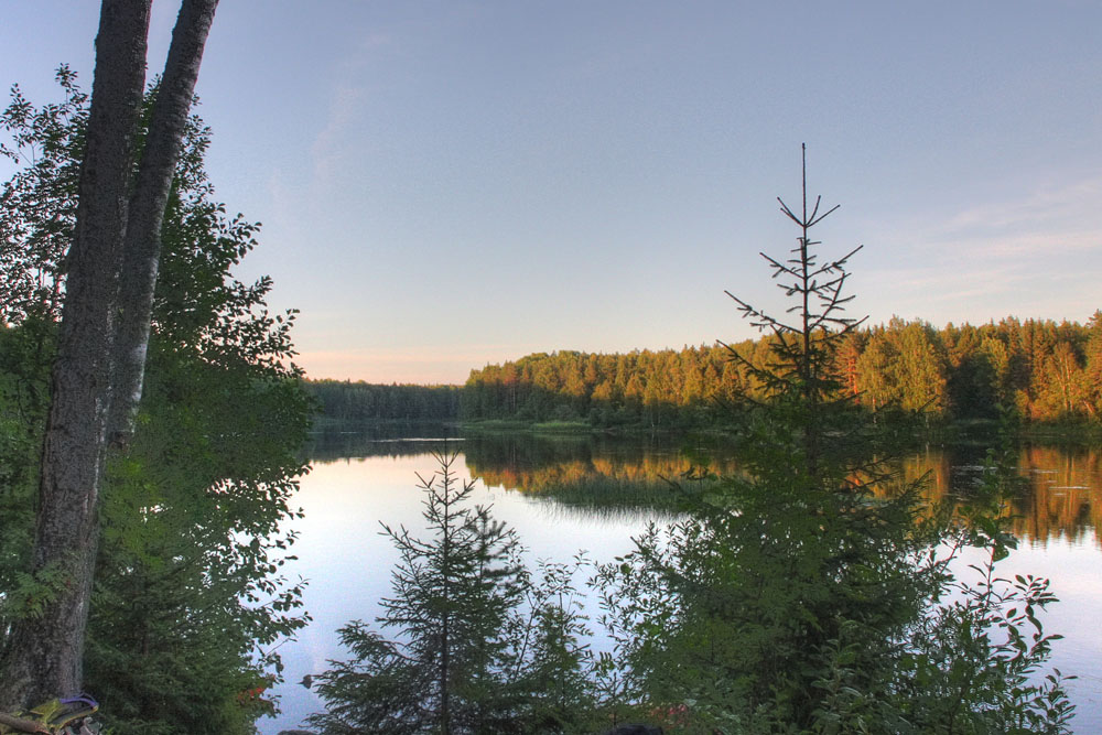 "photo ""***"" tags: landscape, forest, water"