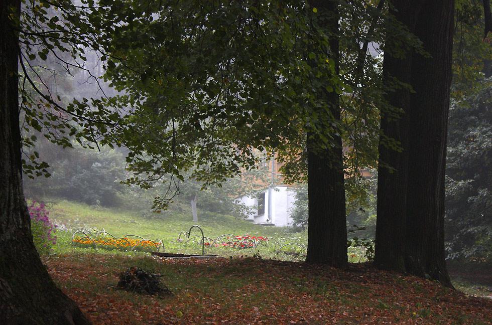 "фото ""Осень пришла в августе..."" метки: пейзаж, лето"