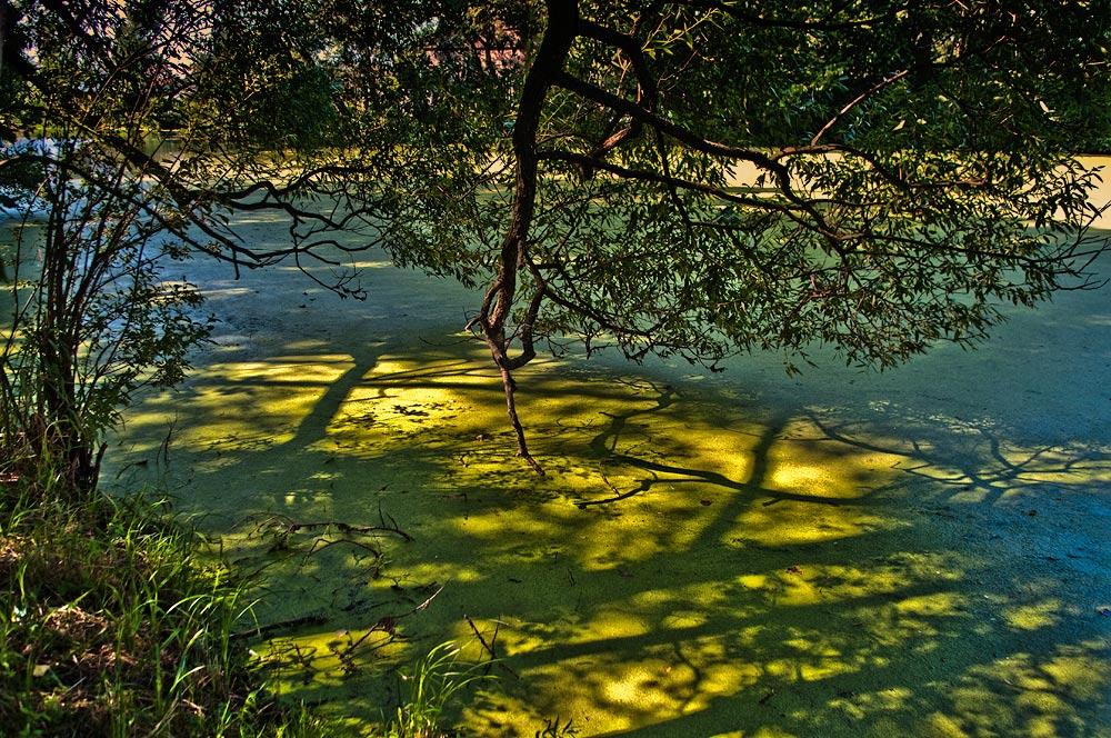 "фото ""в тени"" метки: пейзаж,"