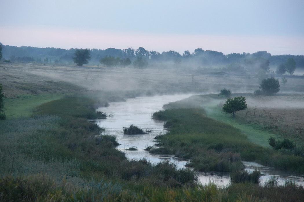 """фото """"Утро,туманное!"""" метки: путешествия, пейзаж,"""