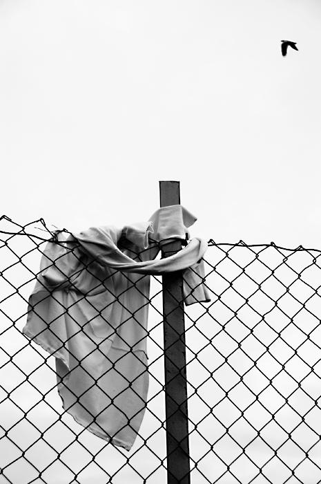 "photo ""Shirt on Fence, Norway 2007"" tags: black&white,"