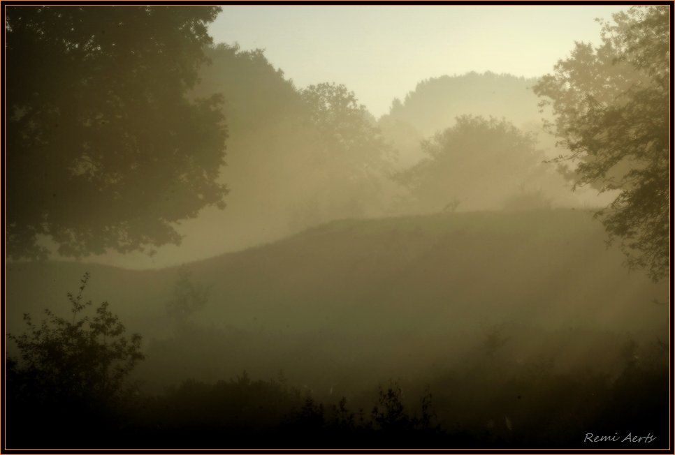"photo ""sunlight in the fog"" tags: landscape, summer, sunset"
