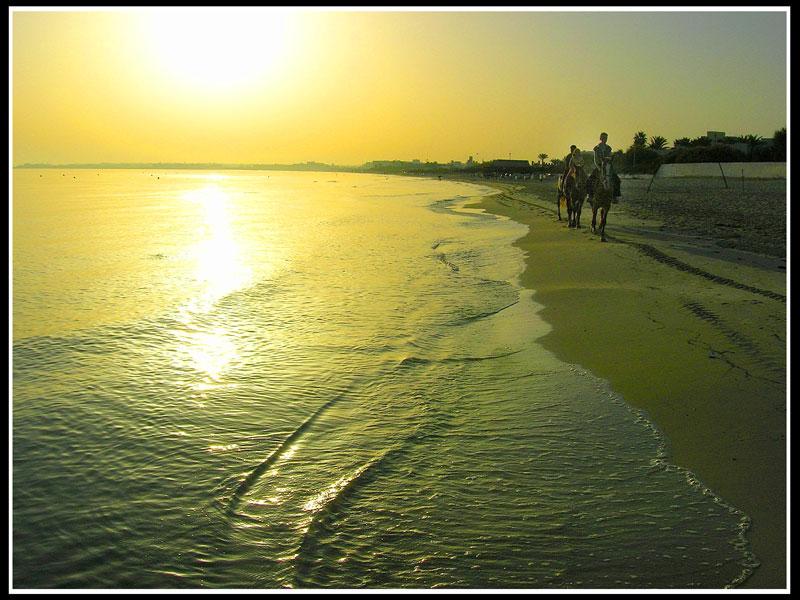 """фото """"утренняя проскачка"""" метки: путешествия, Африка"""