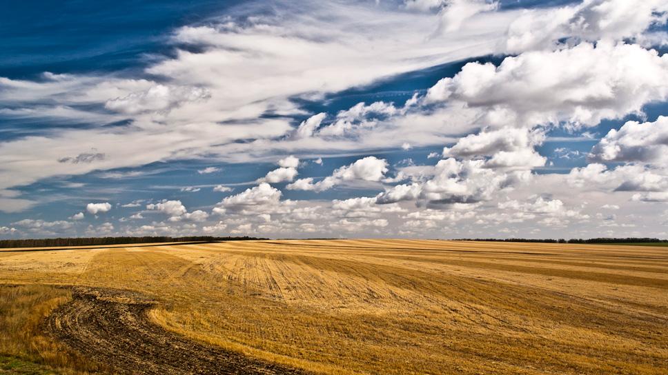 """фото """"Скоро осень..."""" метки: пейзаж, лето, облака"""