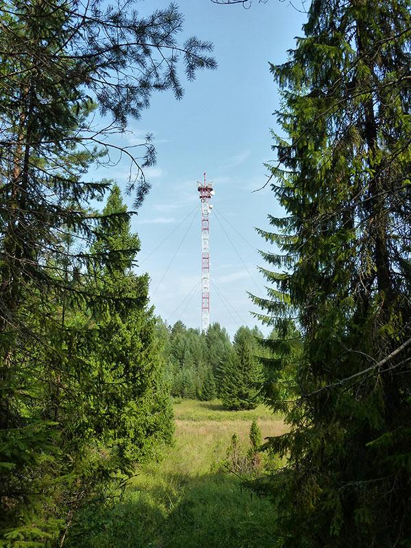 """фото """"Природа и Технология"""" метки: пейзаж, лес, лето"""