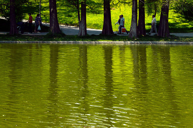 "фото ""Spring watercolor"" метки: пейзаж, весна, вода"