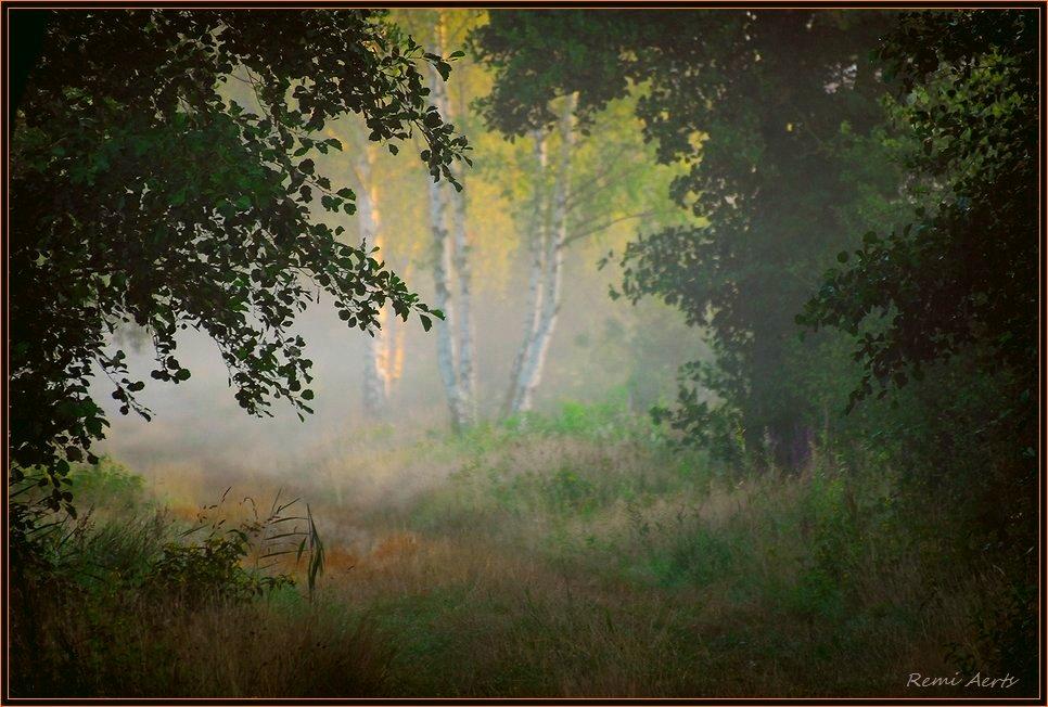 """фото """"good morning good friend"""" метки: пейзаж, закат, лето"""