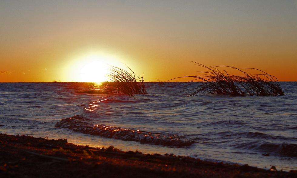 """фото """"Закат в Финском заливе."""" метки: пейзаж, вода, лето"""