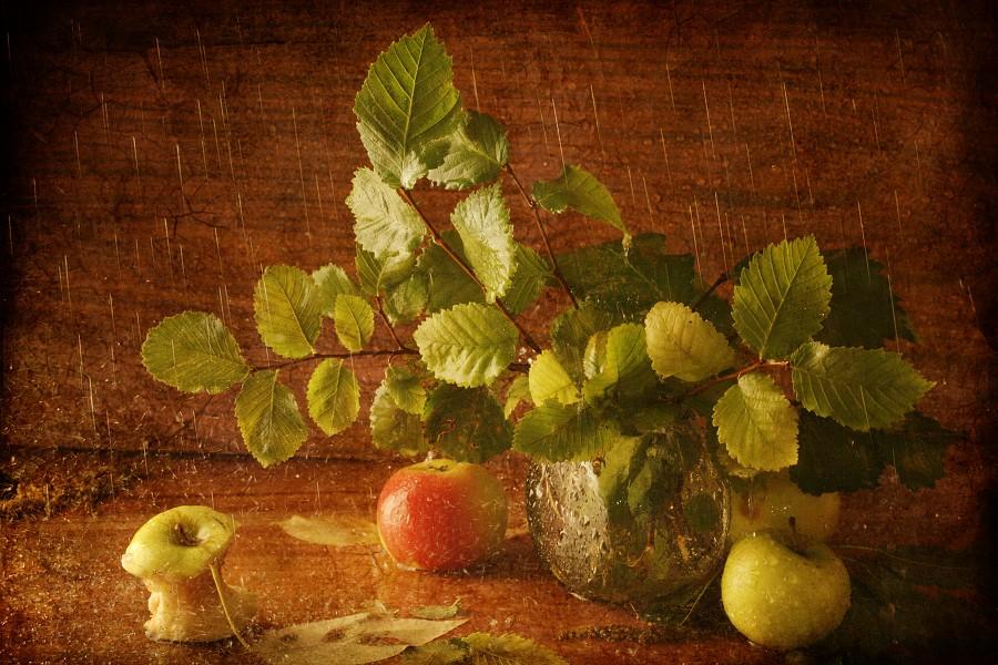 """фото """"Осенний дождь"""" метки: натюрморт,"""