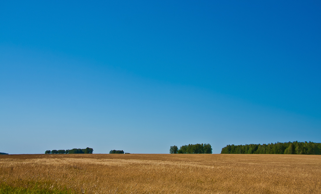 "фото ""Золотая пора..."" метки: пейзаж, осень"