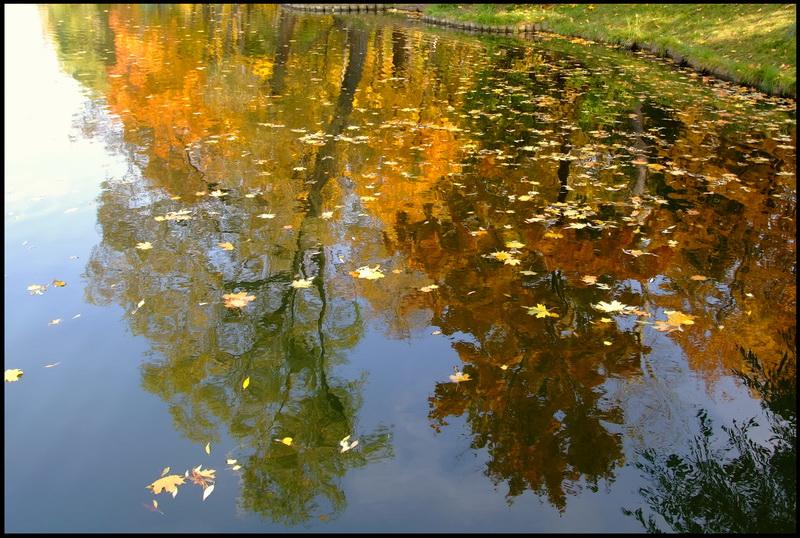"""фото """"Отражение осени"""" метки: пейзаж, вода, осень"""